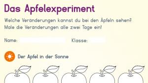 Das Apfelexperiment Image